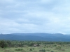 Ek het hierdie foto so \'n ruk gelede geneem in die Addo Olifant Nasionale Park. Die kleurskakerings en die bypassende kwagga het georg vir \'n heel vreedsame foto. (Remi Engelbrecht)